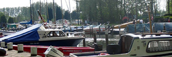 Haven kruitkreek op Camping De Krabbeplaat - Zuid Holland
